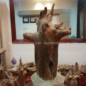 Rare Fragrance Agarwood Aloeswood Handy Sculpture Art Colletion Fengshui 6