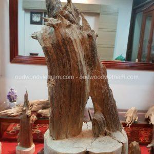 Rare Fragrance Agarwood Aloeswood Handy Sculpture Art Colletion Fengshui 3