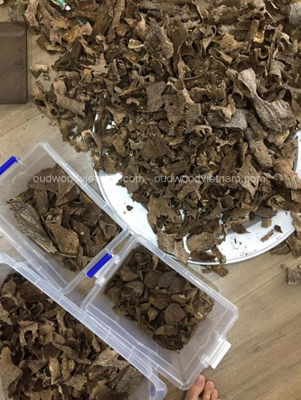 Agarwood Chips Oud Chips Incense Aroma | Natural Wild and Rare Agarwood Chips from Oudwood Vietnam | Pure Material Grade A++ (Quang Binh A)