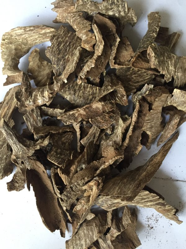 Agarwood Chips Oud Chips Incense Aroma | Natural Wild and Rare Agarwood Chips from Oudwood Vietnam | Pure Material Grade A++ (Khoan Phuc Trach)