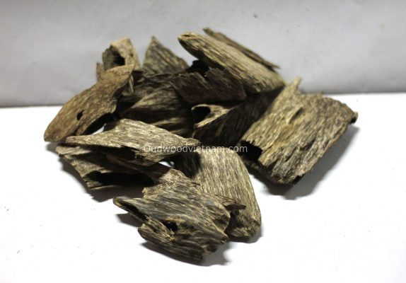 Cultivated agarwood oud chips