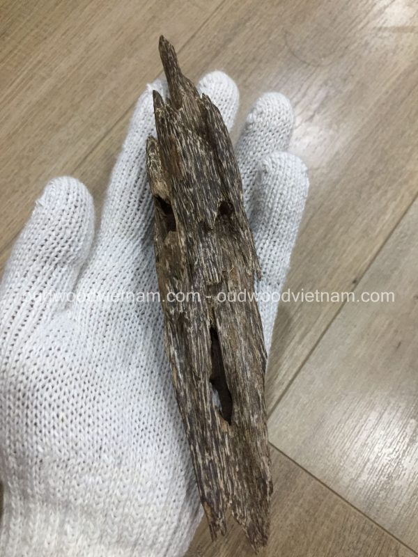 Mini Wild Fragrance Agarwood Aloeswood Handy Sculpture Art Colletion From Khanh Hoa Forest