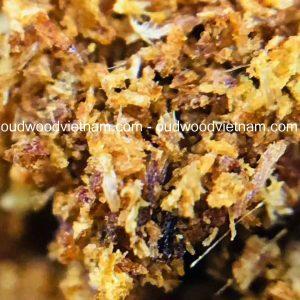 Cultivated Kinam, Ky Nam, Ki nam, Kyara, Qi nan, Calambac, 沉香木奇楠 Powder