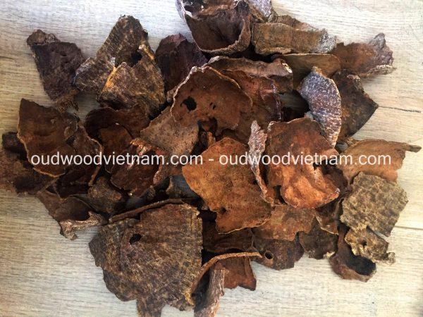 oud wood chips agarwood chips Mo oudwoodvietnam.com